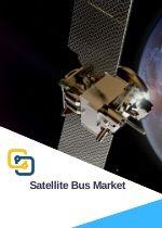 Global Satellite Bus Market