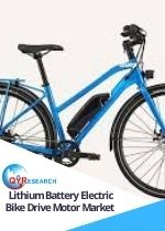 Lithium Battery Electric Bike Drive Motor Market