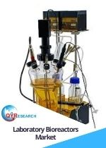 Laboratory Bioreactors Market