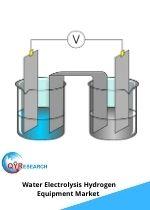 Water Electrolysis Hydrogen Equipment Market
