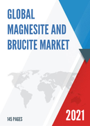 Global Magnesite and Brucite Market Insights and Forecast to 2027