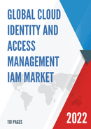 Global and China Cloud Identity And Access Management IAM Market Size Status and Forecast 2021 2027
