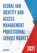 Global IAM Identity and Access Management Professional Service Market Size Status and Forecast 2021 2027