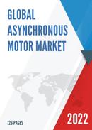 China Asynchronous Motor Market Report Forecast 2021 2027