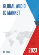 China Audio IC Market Report Forecast 2021 2027