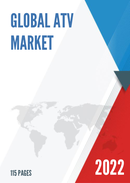 China ATV Market Report Forecast 2021 2027