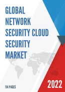Global Network Security Cloud Security Market Size Status and Forecast 2021 2027