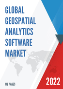 Global Geospatial Analytics Software Market Size Status and Forecast 2021 2027