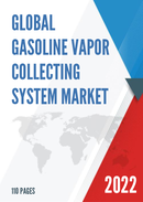 Global and China Gasoline Vapor Collecting System Market Insights Forecast to 2027