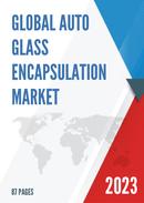 China Auto Glass Encapsulation Market Report Forecast 2021 2027