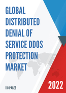 Global Distributed Denial Of Service DDoS Protection Market Size Status and Forecast 2021 2027