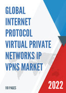 Global Internet Protocol Virtual Private Networks IP VPNs Market Size Status and Forecast 2021 2027